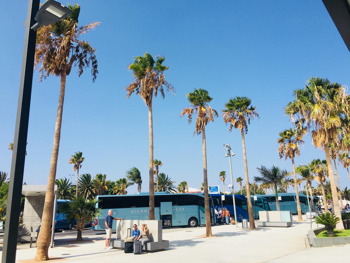 Добраться практически до любой точки на Тенерифе можно на автобусе / Фото Вероника Кордон