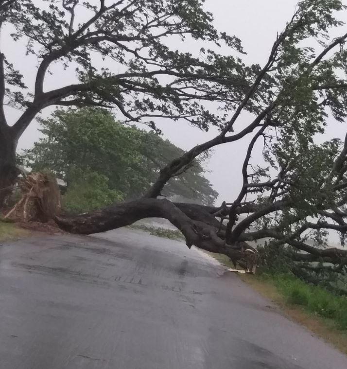 На Індію обрушився потужний шторм / twitter.com/TOICitiesNews