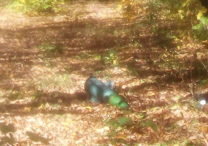 На двор школы в Лисичанске упала часть ракеты / фото Facebook Виталий Шведов