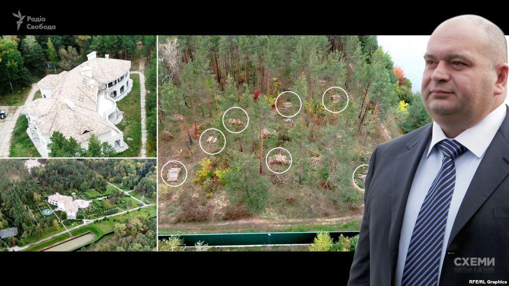 Біля маєтку Злочевського вирубують державний ліс / фото radiosvoboda.org