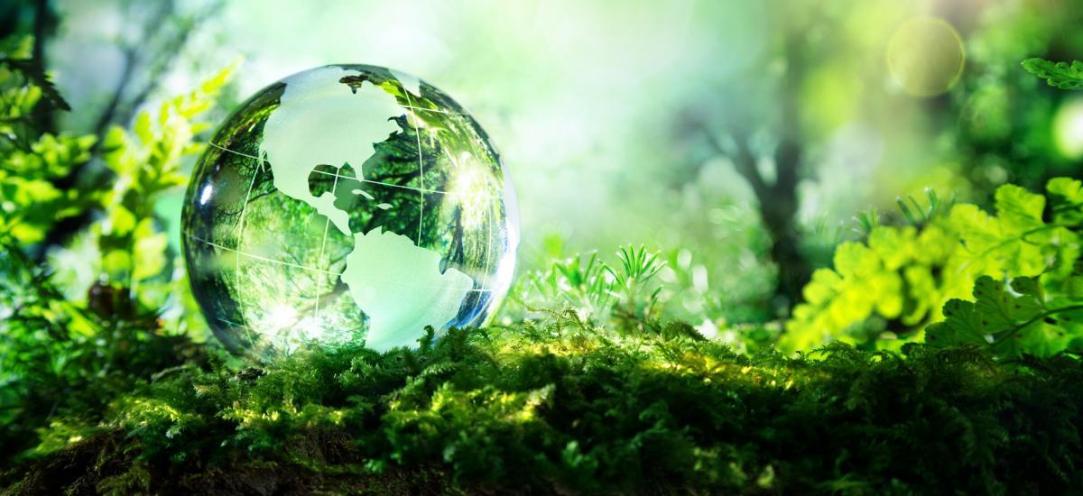 На Закарпатье обсудят вопросы защиты климата / trialectics.net, иллюстрация