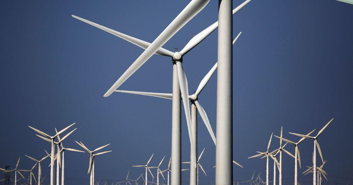 Потенциал рынка зеленых облигаций оценили в $73 миллиарда / REUTERS