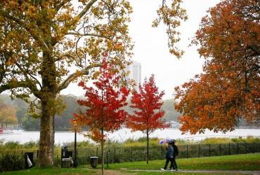 С каждым днем будет все холоднее: синоптики дали прогноз на ноябрь