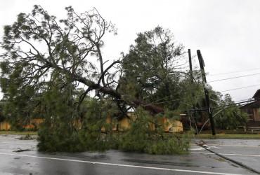 Кількість жертв урагану Майкл досягла 36 осіб