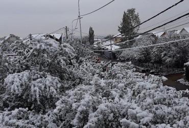 Снегопад парализовал дорожное движение в Алматы (видео)