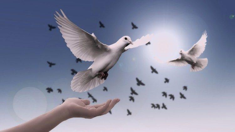 Всемирный день мира / vaticannews.va