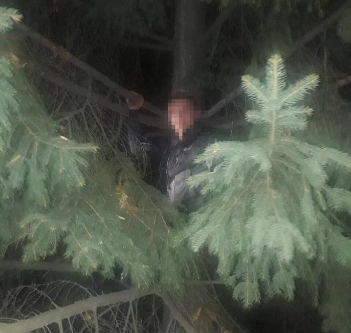 Один із втікачів встиг залізти на дерево / фото police.gov.ua