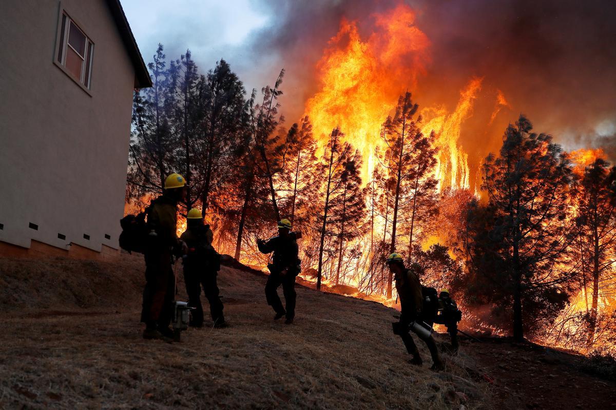 В Калифорнии бушует лесной пожар / REUTERS