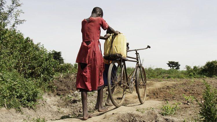 Папа: отсутствие доступа к питьевой воде – позор человечества / vaticannews.va