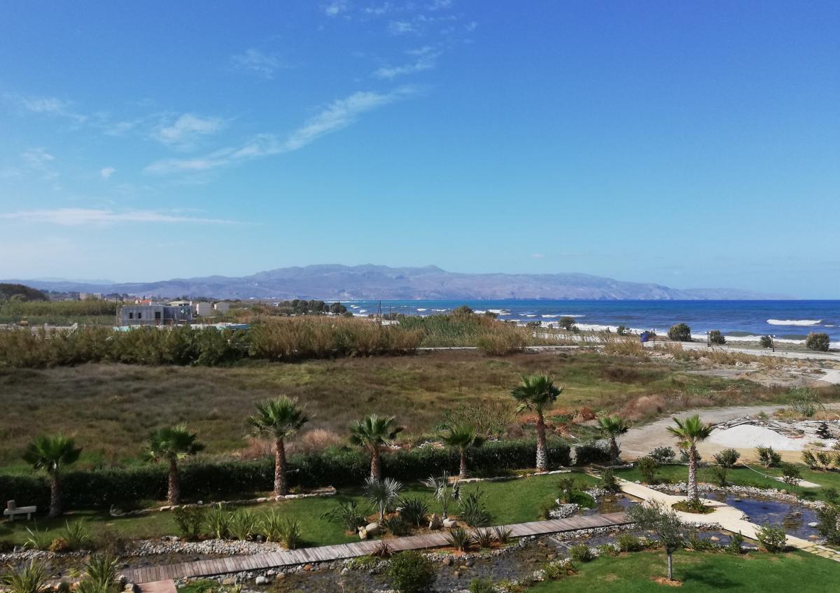 Климат Крита создал условия для уникальной кухни / фото Марина Григоренко