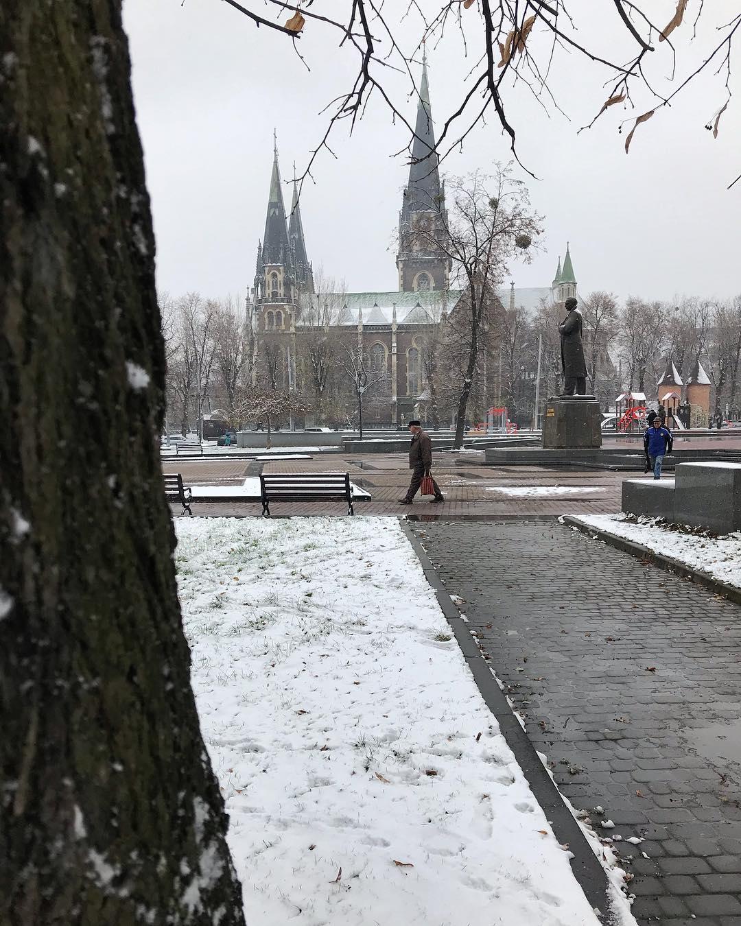 Перший сніг у Львові - в мережі з явилися фото - новини погоди  347de56b5643b