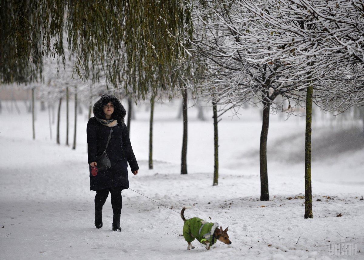 На вихідних в Україні знову потепліє / УНІАН