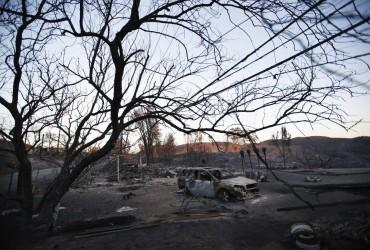 Лісові пожежі в Каліфорнії: кількість жертв зросла до 31 людини (фоторепортаж)