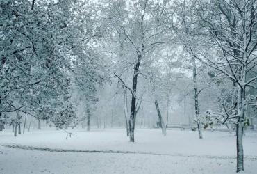 У мережі показали фото першого снігу в Криму