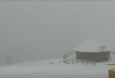 Карпати засипає снігом (фото)