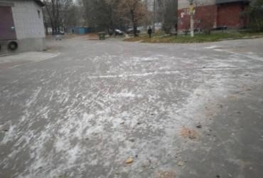 У Дніпрі випав перший сніг (фото)