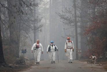 Лесные пожары в Калифорнии: 69 человек погибли, более 600 пропали без вести (видео)
