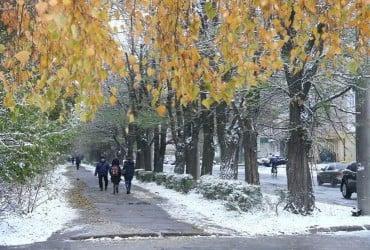 Мелитополь засыпало снегом (видео)