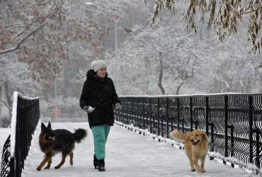 В Украине завтра будет холодно, местами ожидается до -14° (видеопрогноз)