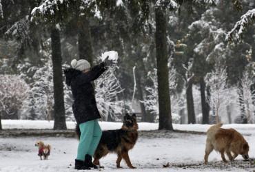 У Києві завтра без опадів, температура до +2°