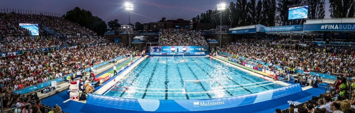 Украина претендует на проведение чемпионата мира по водным видам спорта / fina.org