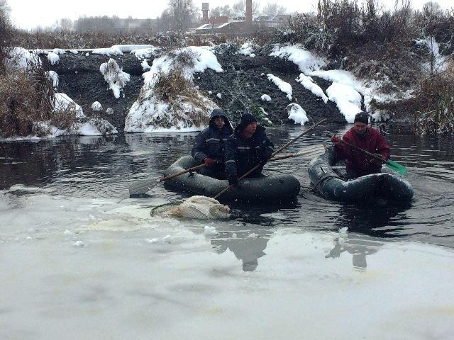 фото пресс-службы Управления ГСЧС Украины в Житомирской обл
