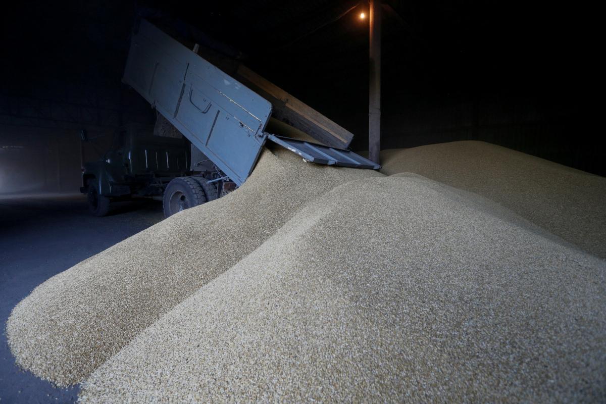 Украина уменьшила экспорт зерновых более чем на 20% / REUTERS