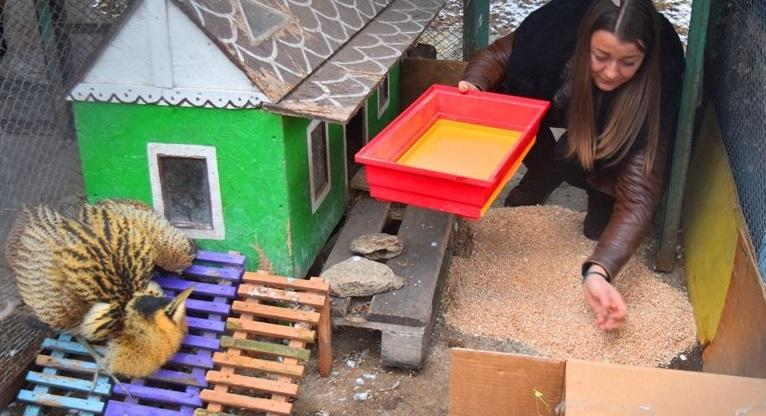 В одеському зоопарку є фахівці-практики, ветеринари, є спеціальні корми \ 04868.com.ua