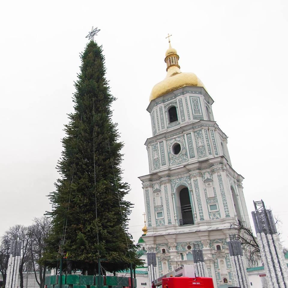 Елку откроют 19 декабря / фото facebook.com/FolkUkraine