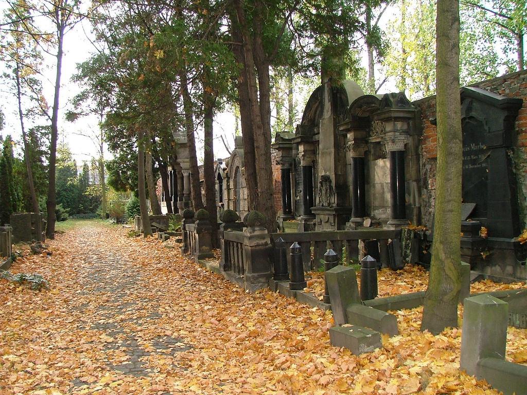 Старое еврейское кладбище во Вроцлаве / ru.wikipedia.org