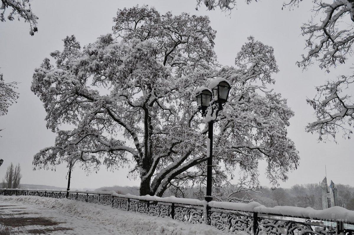 У понеділок та вівторок в Україні очікується сніг / фото УНІАН
