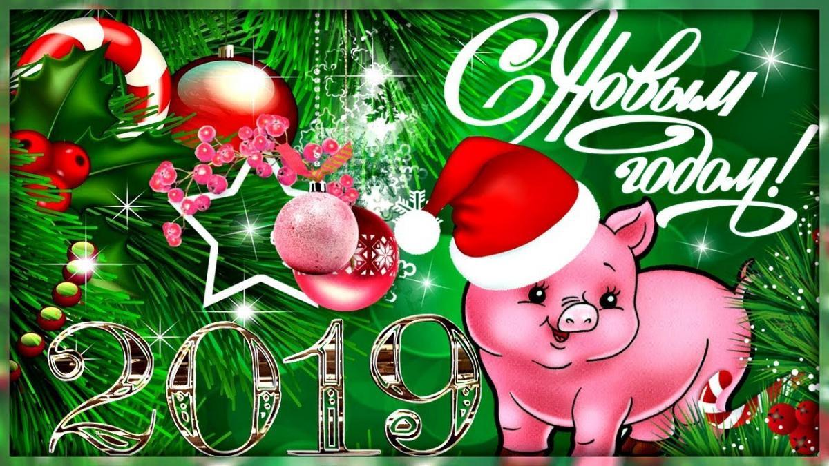 2019 год - год свиньи по китайскому календарю/ YouTube