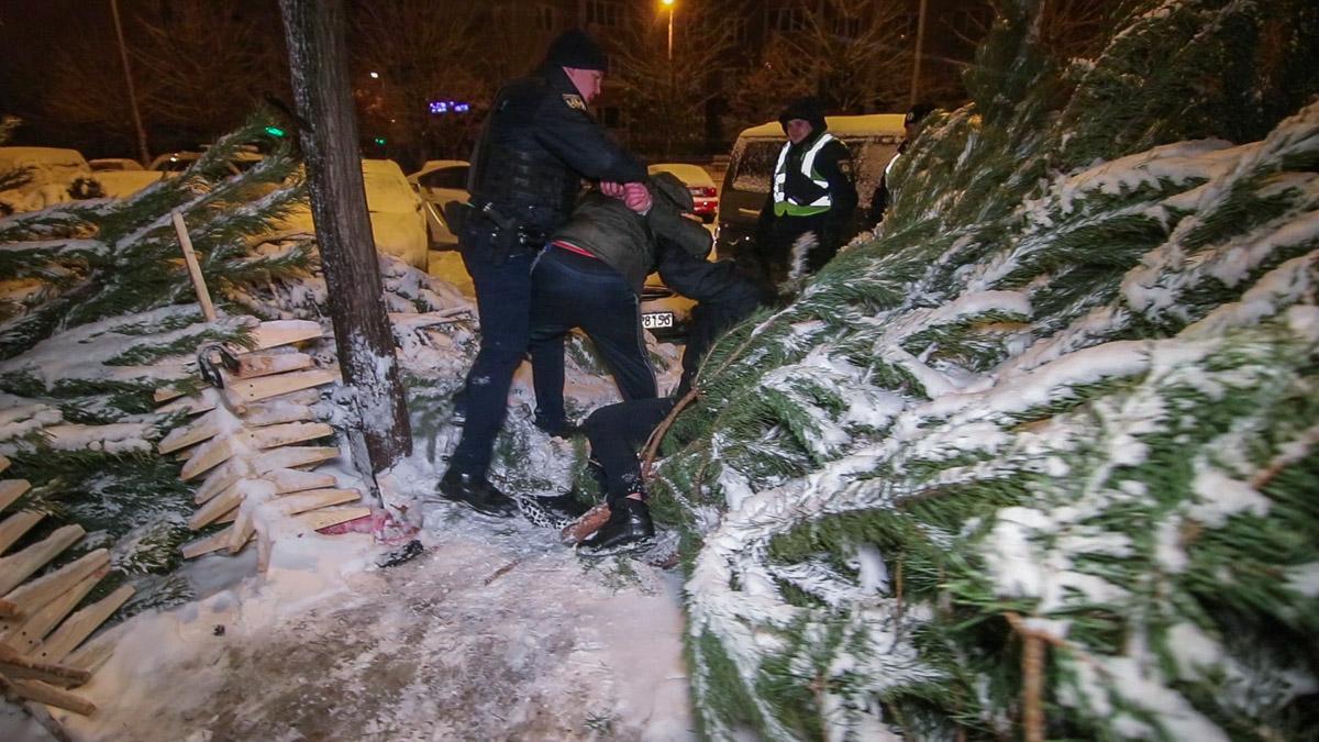 В Киеве задержали похитителей новогодней елки / Информатор