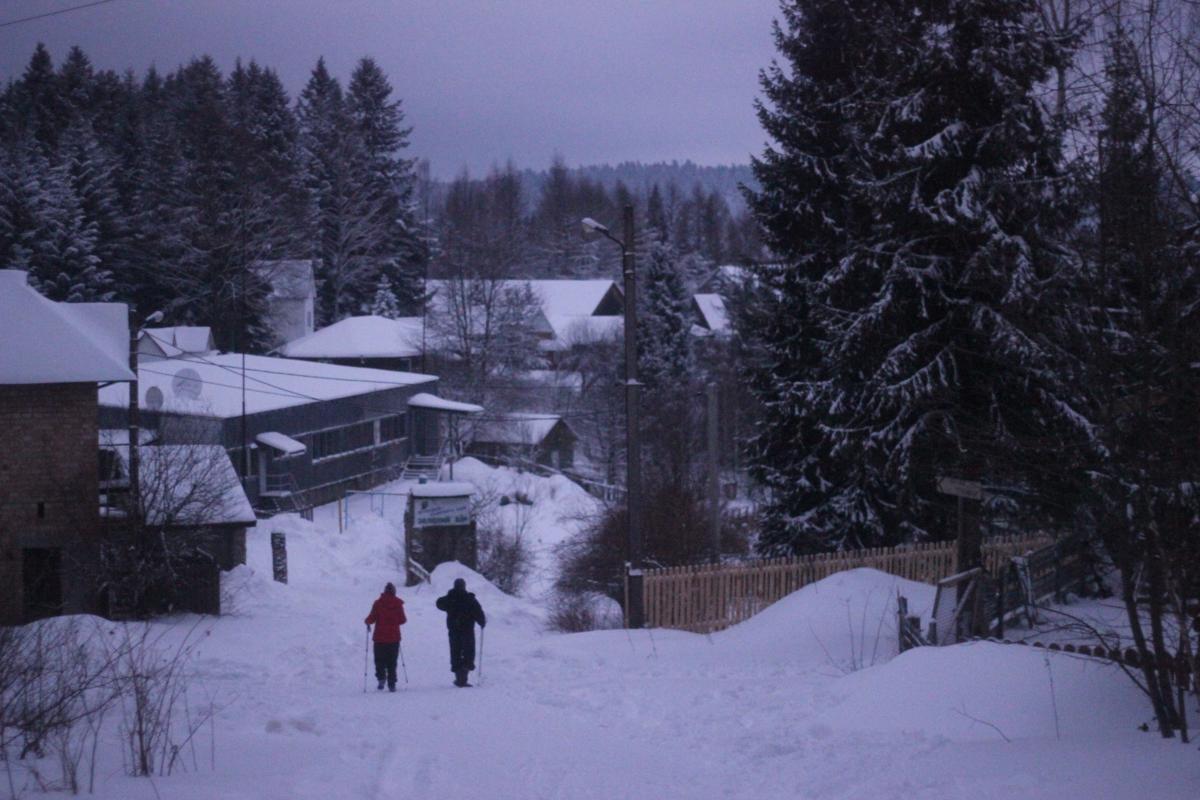 Прогулятся на лыжах можно и по лесным тропинкам / фото: Ольга Броскова