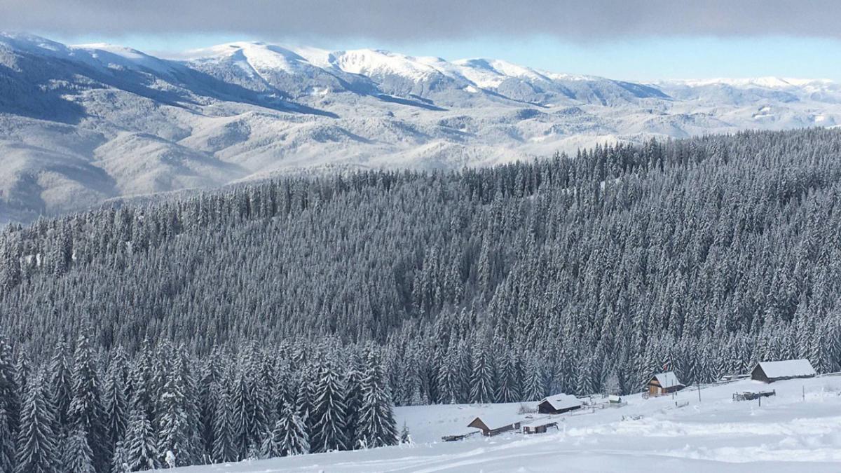 Ради такой красоты стоит приезжать зимой в Карпаты / Фото Вероника Кордон