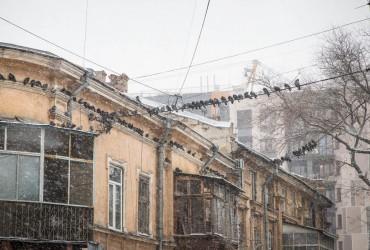 У мережі показали фото засніженої Одеси