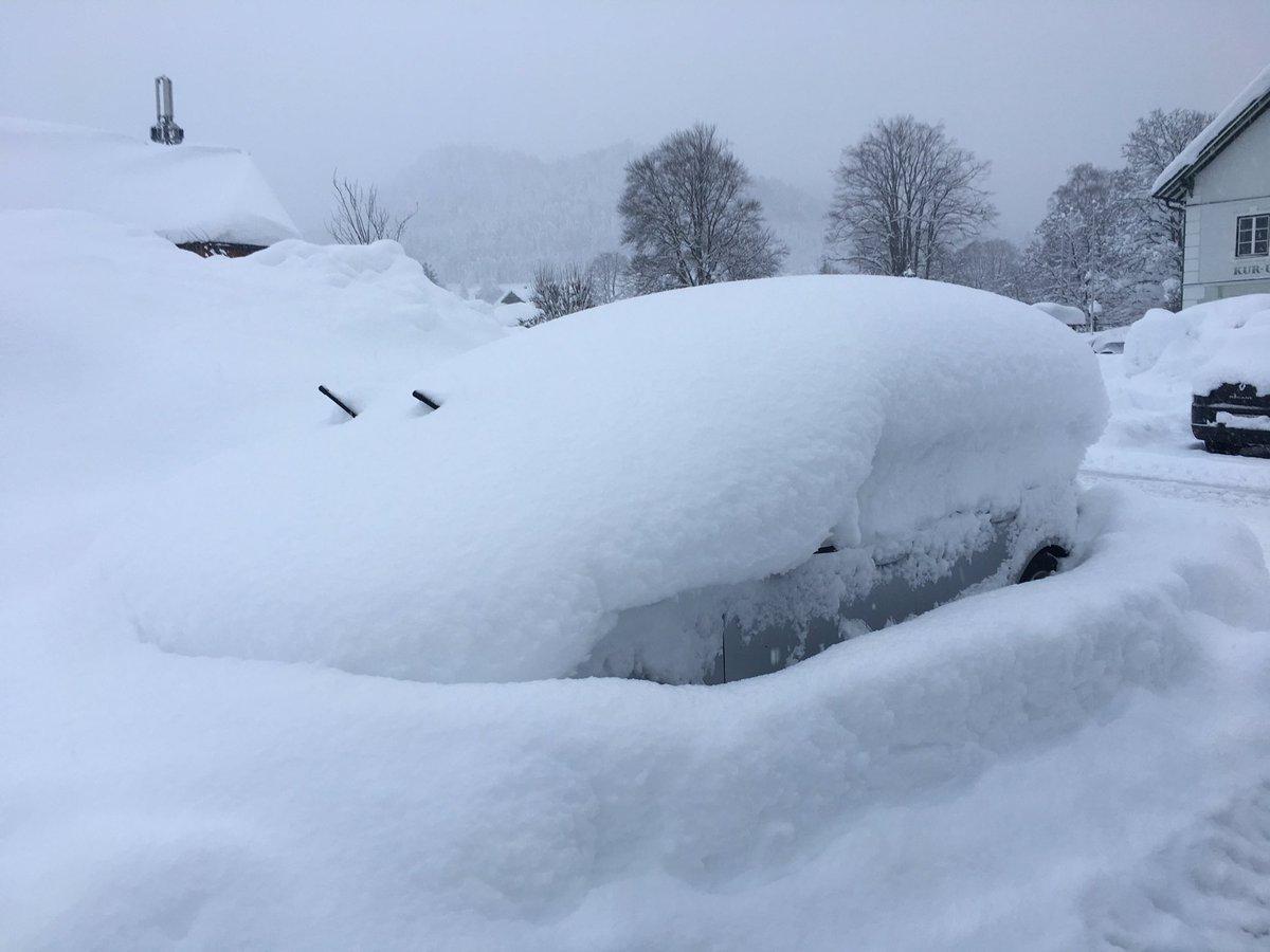 Австрія, Німеччина і Чехія потерпають від снігопадів / twitter.com/AmienChicago