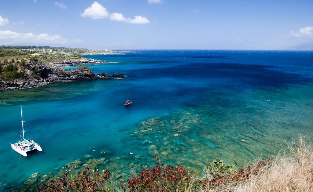 18 января 1778 года были открыты Гавайские острова / Hawaii Savvy / flickr.com