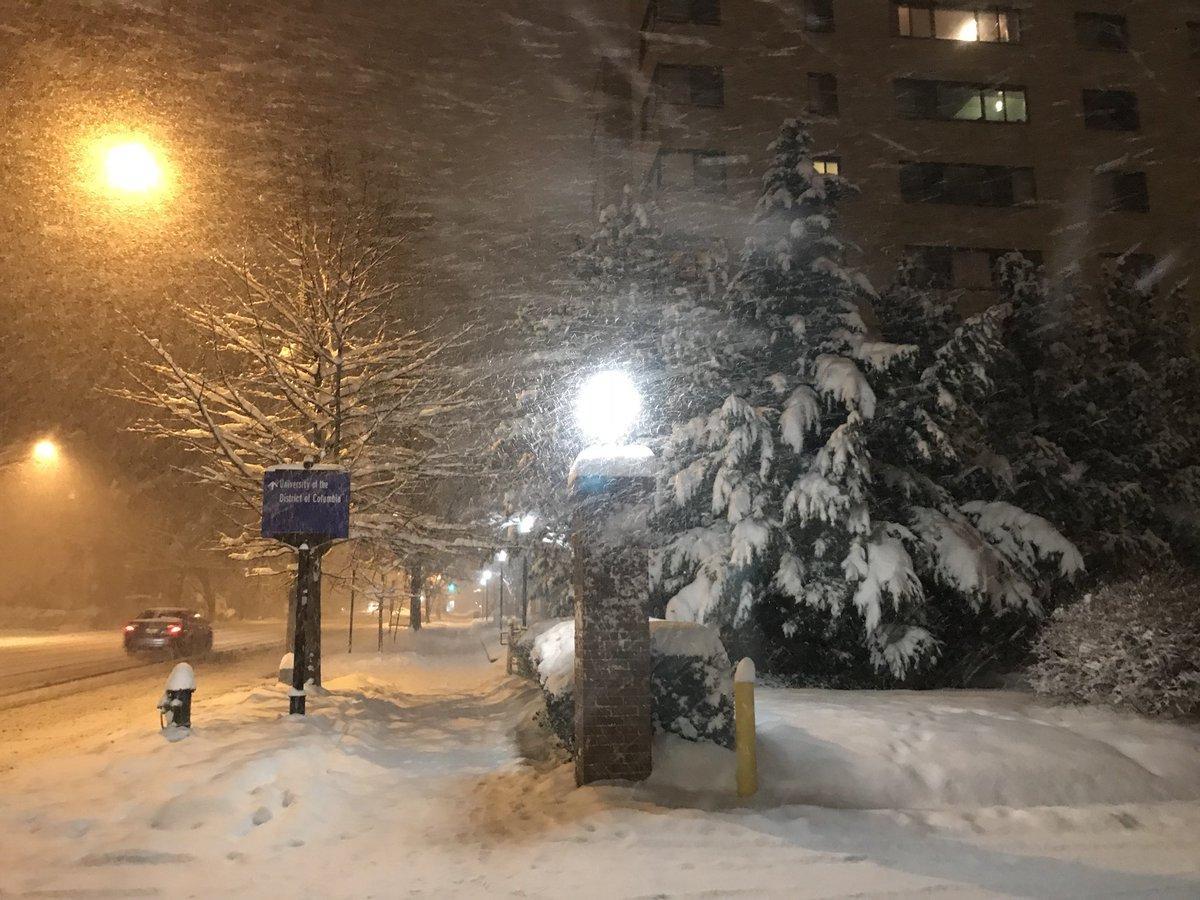 США накрила снігова буря / twitter.com/islivingston