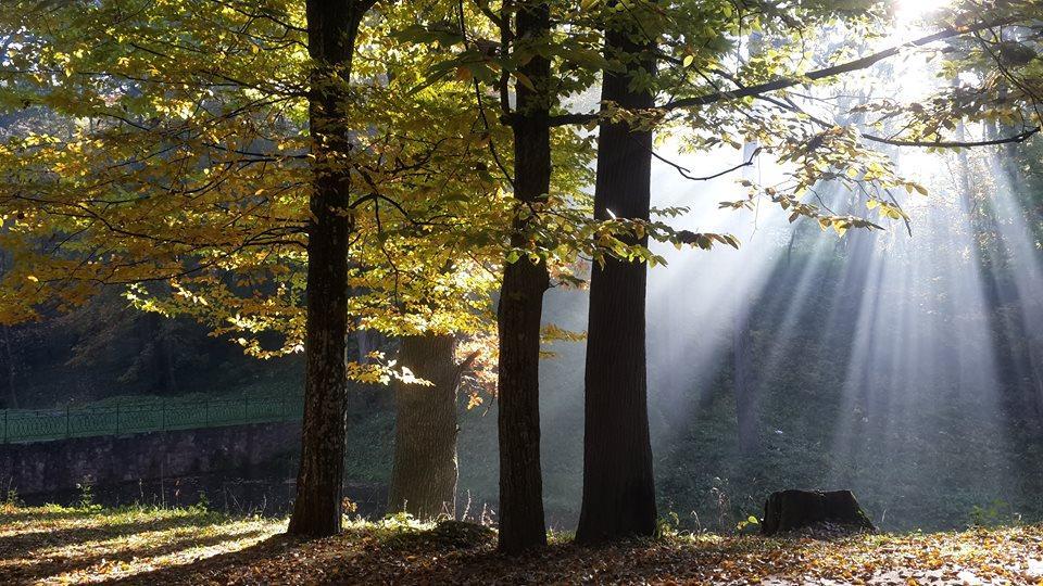 Осенью в трускавецком парке тоже очень уютно / Фото Марина Григоренко