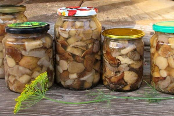 Семь человек отравились консервированными грибами / фото grib-info.ru