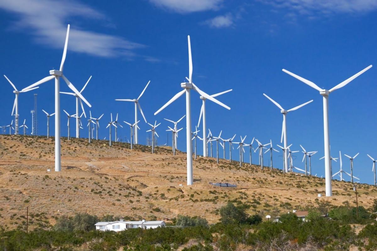 """В компании подчеркнули, что ВЭС """"Сиваш"""" мощностью 250 МВт - это только начало / фото infoport.live"""