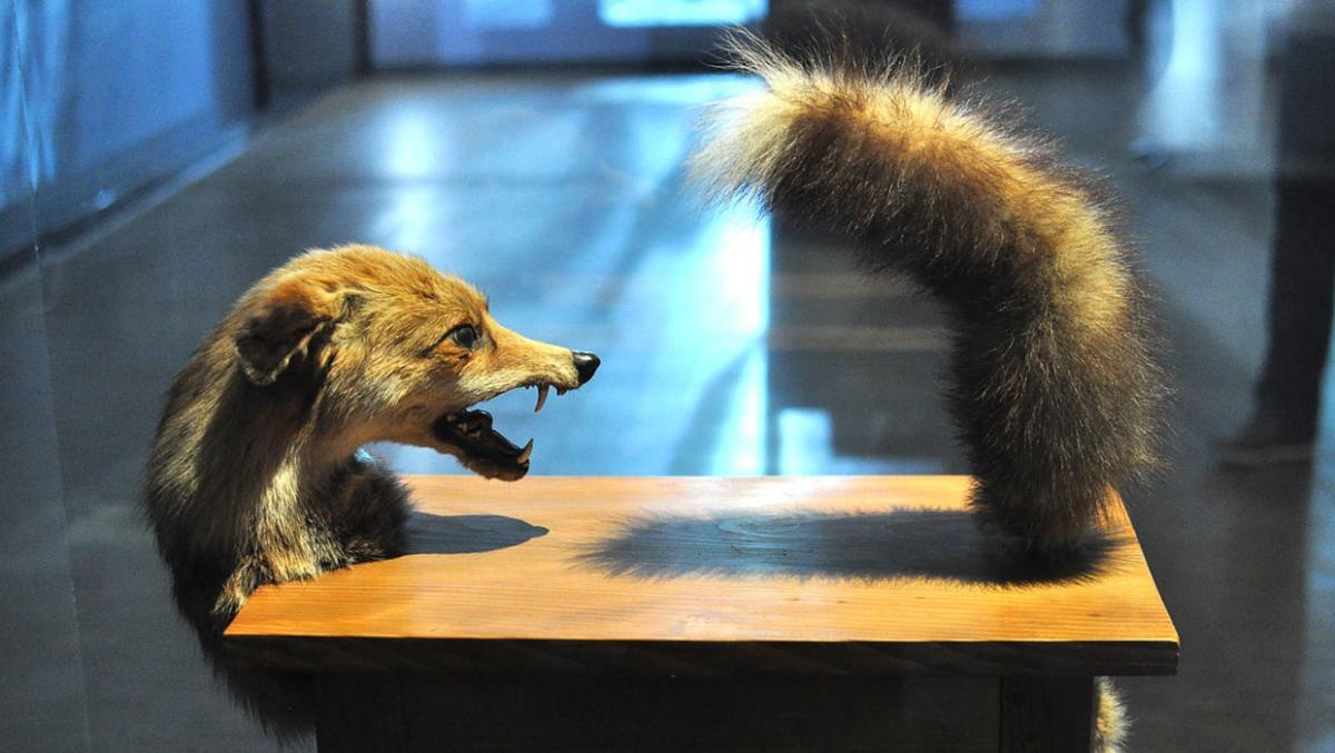 Виктор Браунер «Волк-стол», Центр Жоржа Помпиду, Париж / Фото flickr.com