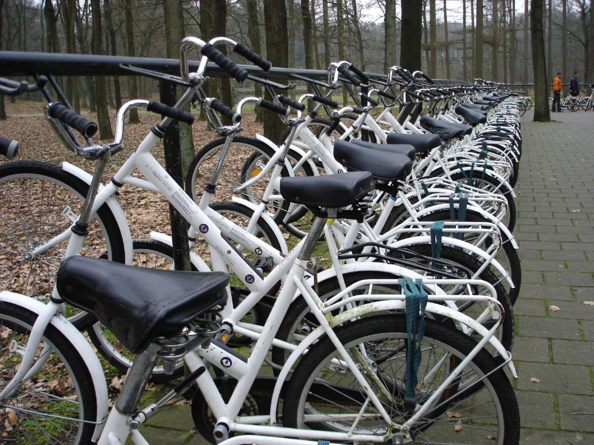 Велопарковка в парке-музее современного искусства / Фото flickr.com