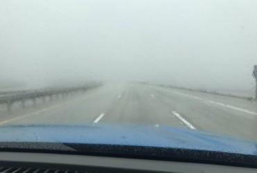 В Калифорнии из-за тумана на трассе столкнулись 19 автомобилей (видео)
