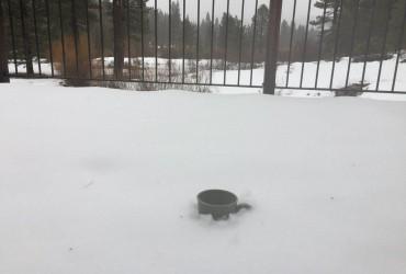 Тихоокеанский шторм принес в Калифорнию мощные снегопады и дожди (видео)