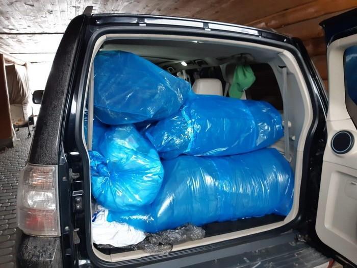 Во время обысков было изъято оптовую партию каннабиса / фото СБУ
