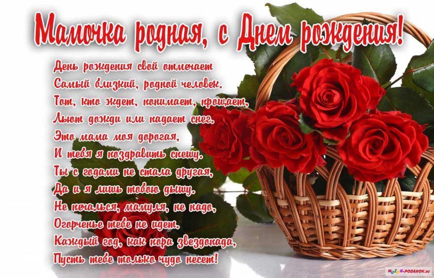 cepia.ru