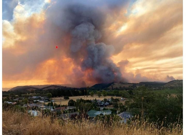 У Новій Зеландії вирують пожежі / www.facebook.com/Nelsonfirebrigade, Steph Richard