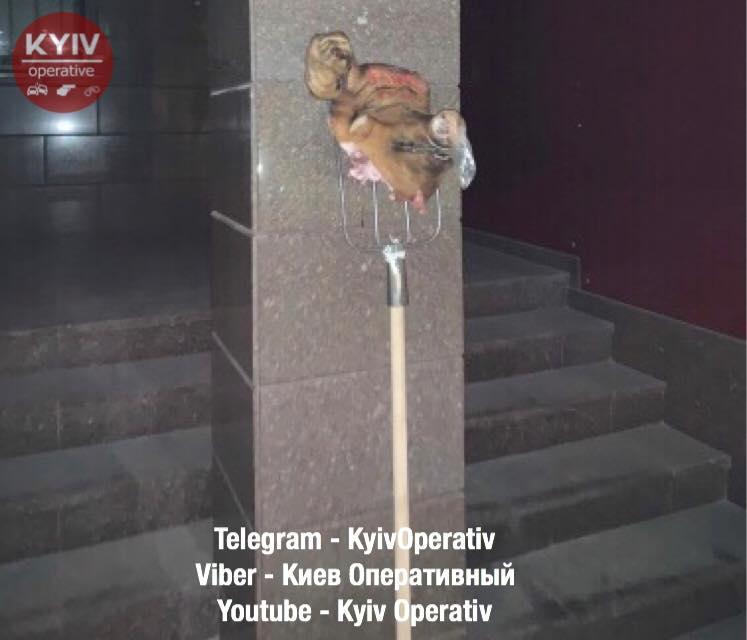 фото Киев оперативный